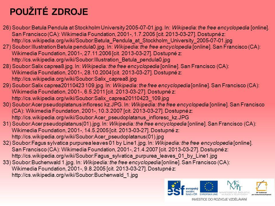 POUŽITÉ ZDROJE 26) Soubor:Betula Pendula at Stockholm University 2005-07-01.jpg. In: Wikipedia: the free encyclopedia [online].